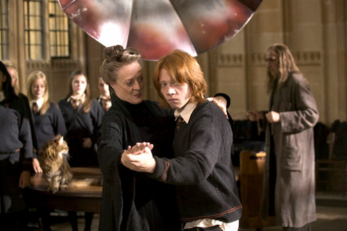 Minerva McGonagall - Harry Potter: Into The Fire