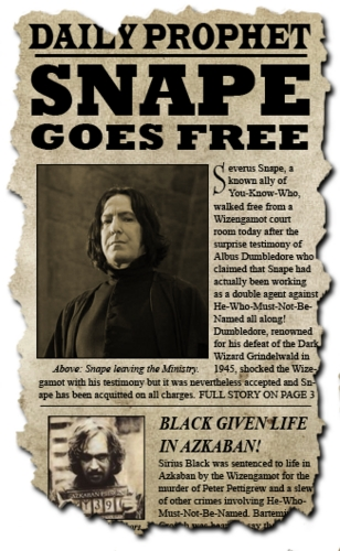 Severus Snape Harry Potter Into The Fire